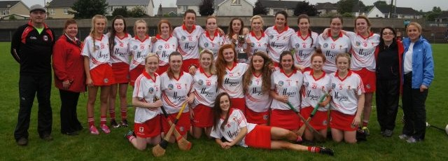 dungannon camogs